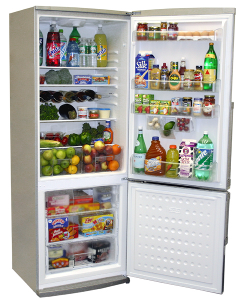 24 Quot Wide Energy Star Rated Energy Efficient Refrigerators